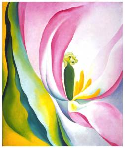 okeeffepink-tulip-lg