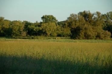 Token Creek land 2 Jess Anderson
