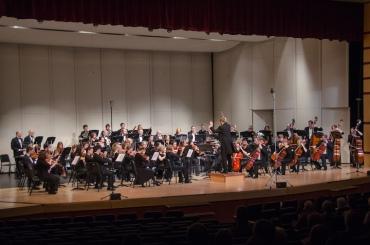 Middleton Community Orchestra press photo1