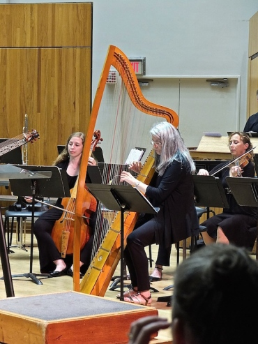 MEMF 2015 All Festival Celtic harp