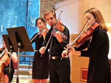 Wiily Street Bach violas