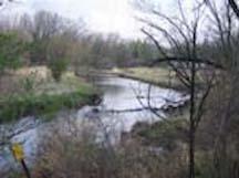 Token Creek Watershed 1