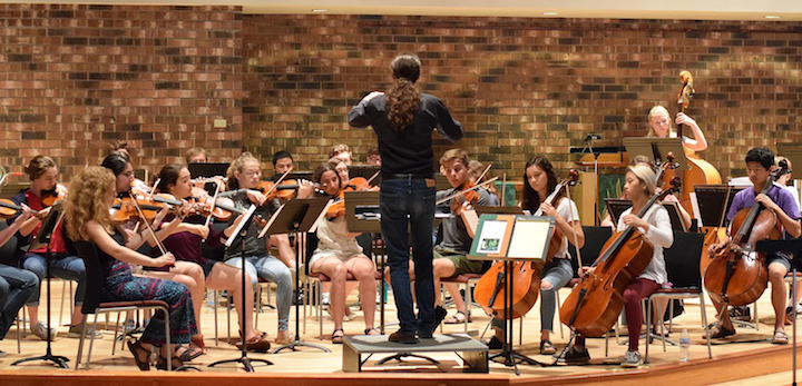 Classical music: The Madison Area Youth Chamber Orchestra